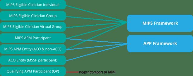 MIPS-Framework-Reporting
