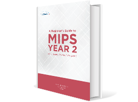 MIPS-eBook_Image_Mockup