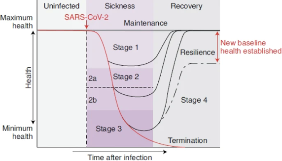 Ayres - Stages of COVID recovery